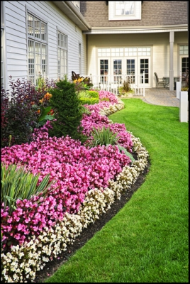 Heinz nurseries landscaping services in tallahassee our company workwithnaturefo